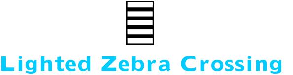 Lighted Zebra